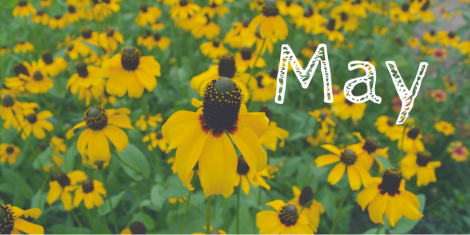 may-gardenupdate